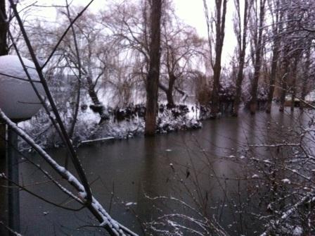 2014-01-23 Hochwasser (5)