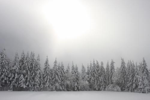 2015-02 Winterlager Heubach (723) (500x333)