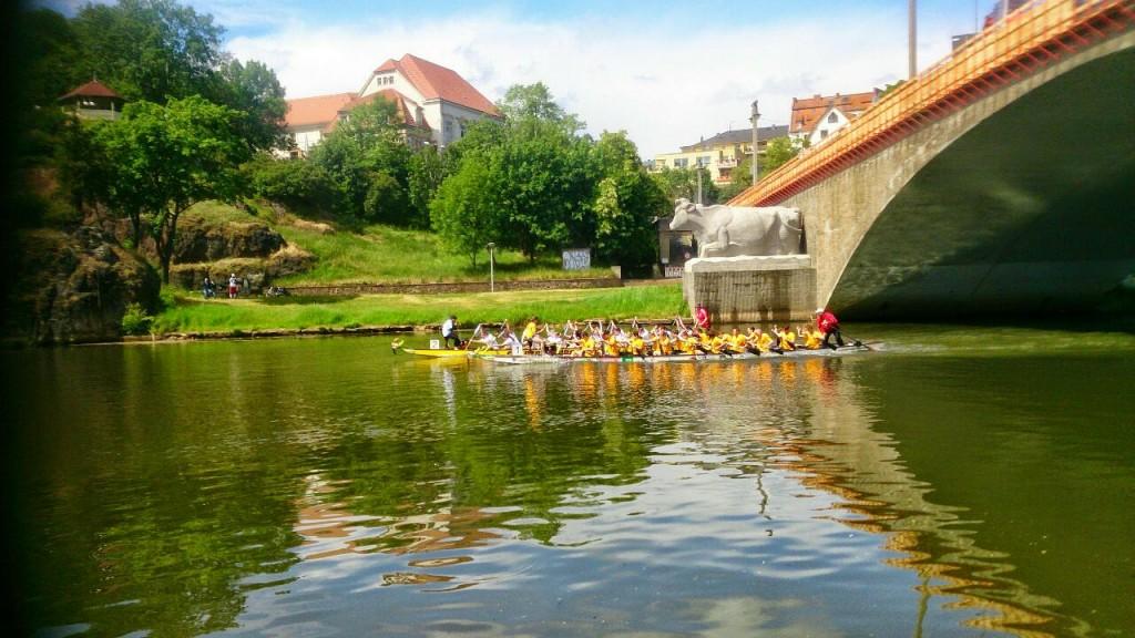 2015-05-30 Hallesches DBR Bilder I. Schmidt (1)
