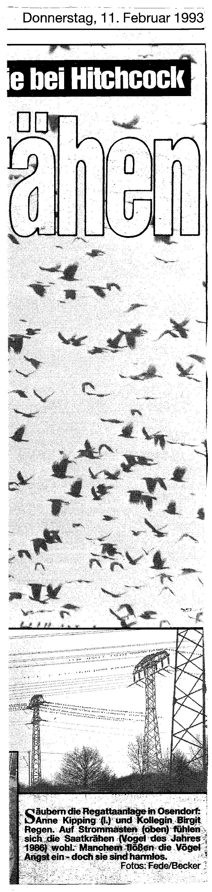 1993-02-11 Krähen am See 2