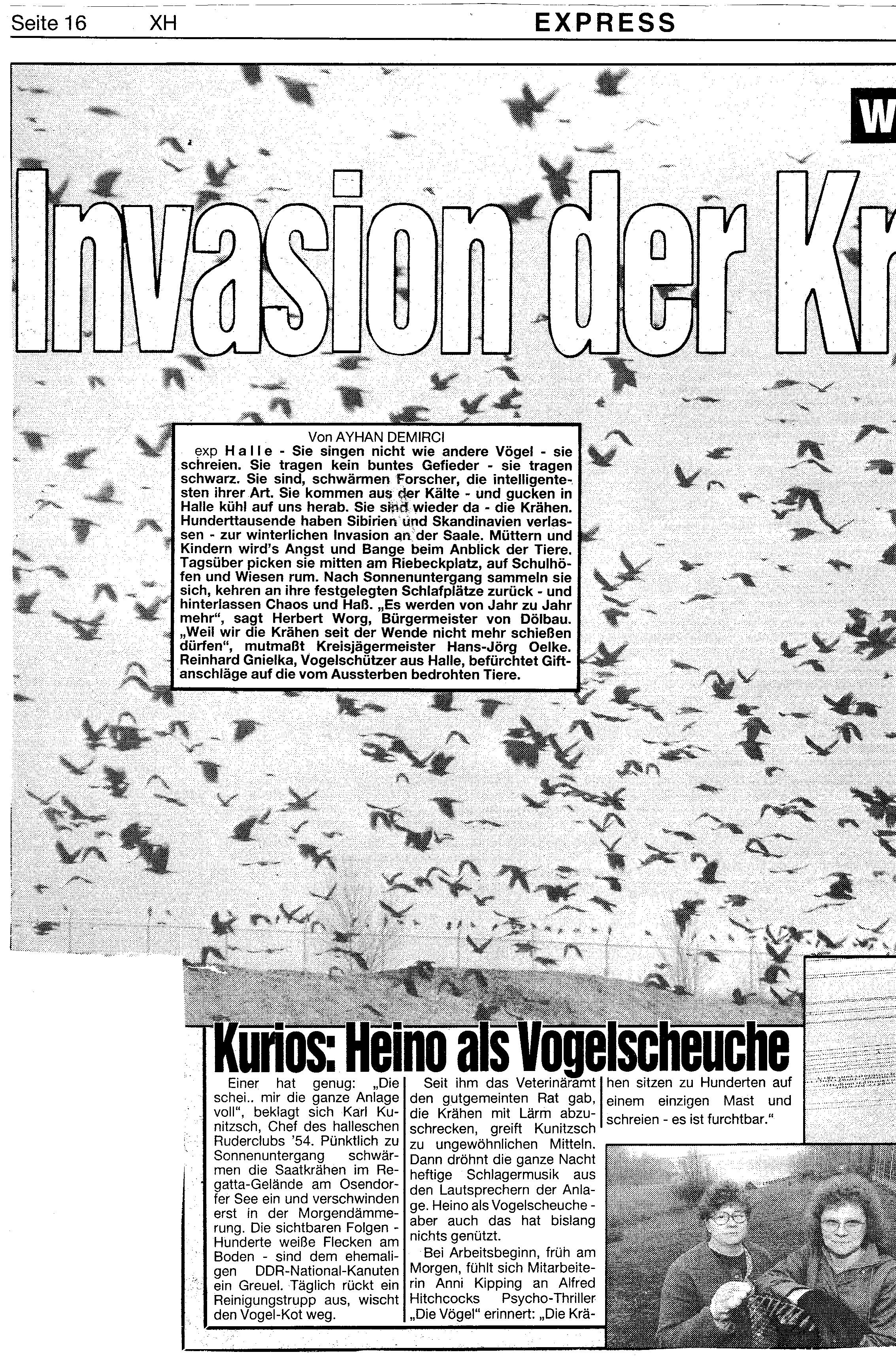1993-02-11 Krähen am See