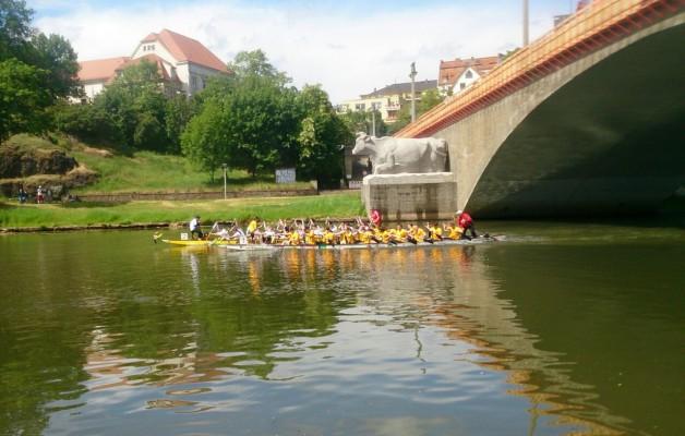 19. Hallesches Drachenbootrennen zum Hansefest- seid ihr wieder dabei?  .. am 25.05.2019